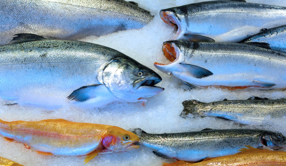 Copper River King Salmon® , sockeye and other fish