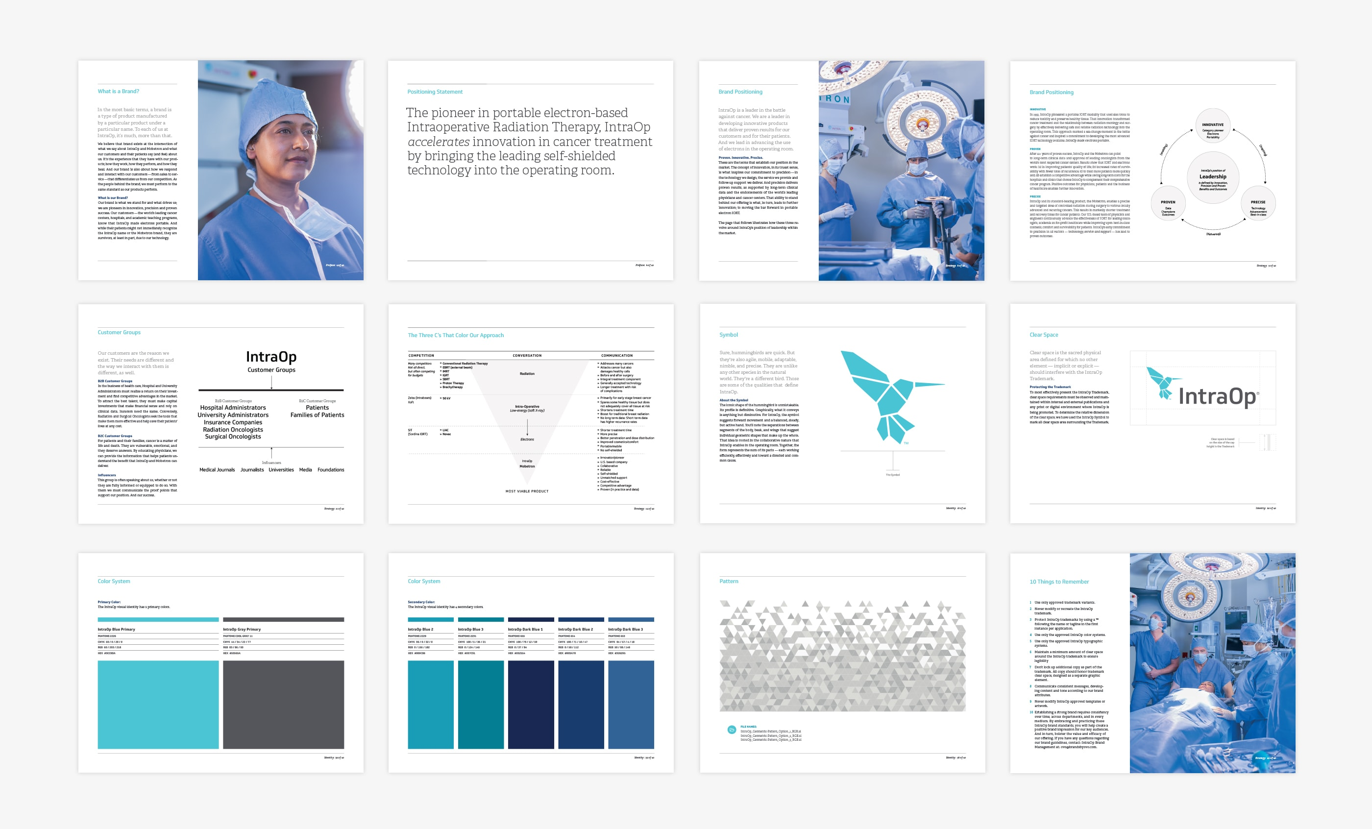 Pages from the IntraOp Brand Guidelines