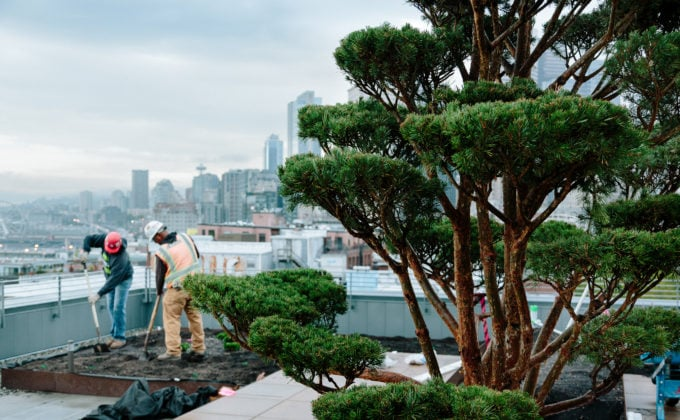 Snyder Photography Crew on Roof with Skyline